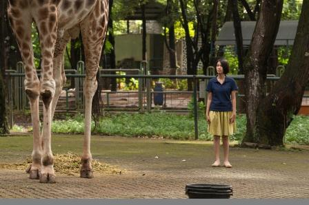 Stills-Zoo-2